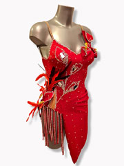 Arum Lily original latin red dance dress size S/M